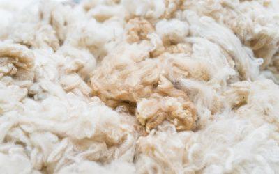 Baby Alpaka Wolle für Alpaka Pullover Garn Thumbnail