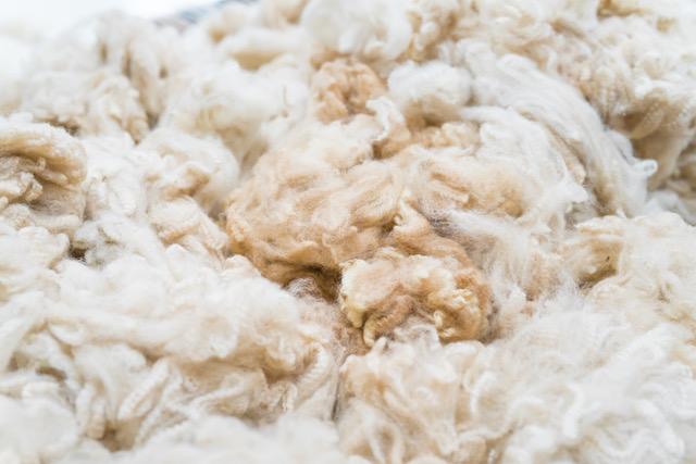 Alpaka Wolle Bild Vorschau für Alpaka Pullover und Alpaka Cardigan